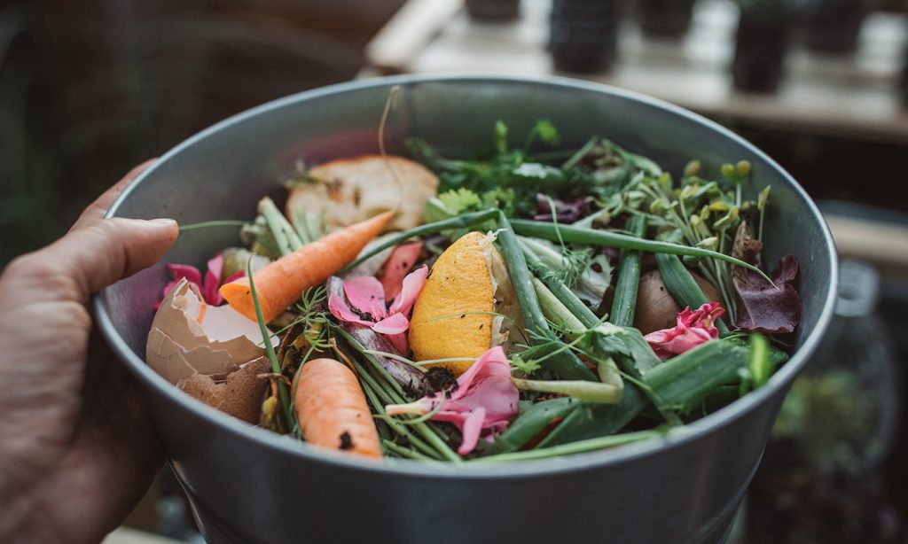 Compost Your Scraps In an Apartment
